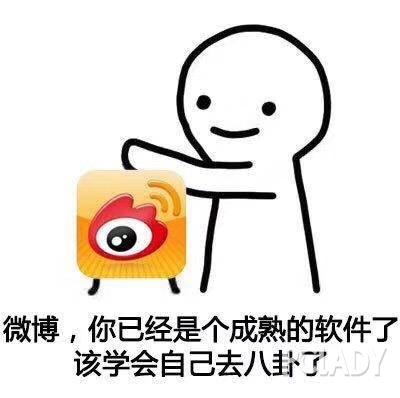 赵丽颖冯绍峰