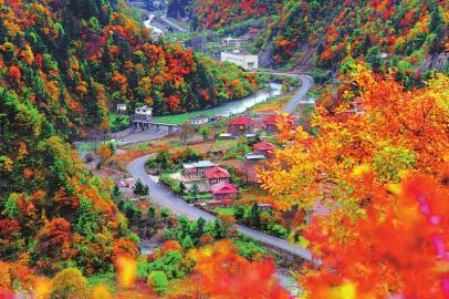四川红叶生态旅游节