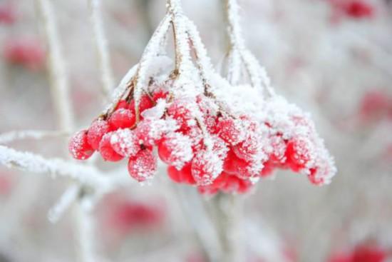 霜降:长河一望似冰川,近看丹枫映碧天