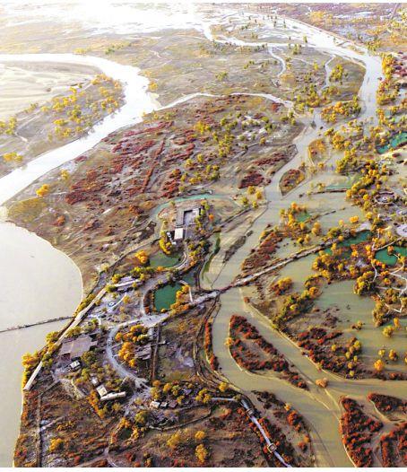 生态输水改善塔里木河流域环境