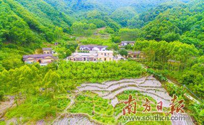 广东加快推动乡村振兴 促进城乡融合发展