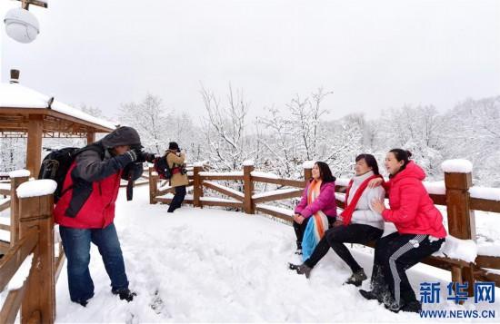 #(环境)(2)雪落呼伦贝尔