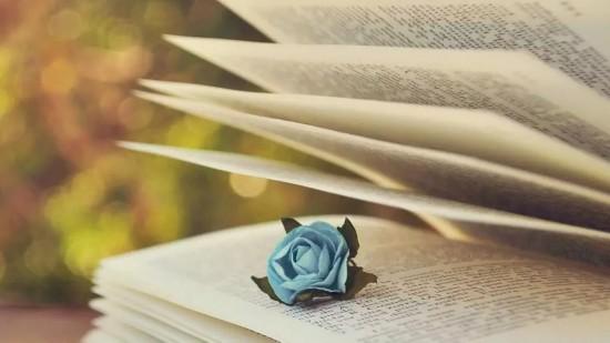 【喜庆妇女十二大·好书推荐】万物丰收日,正是品书时