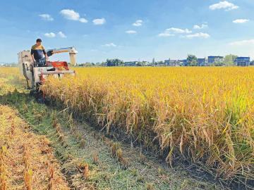 探访中国农村改革策
