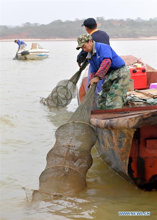 CHINA-JIANGXI-NANCHANG-FISHERY-CRAB (CN)