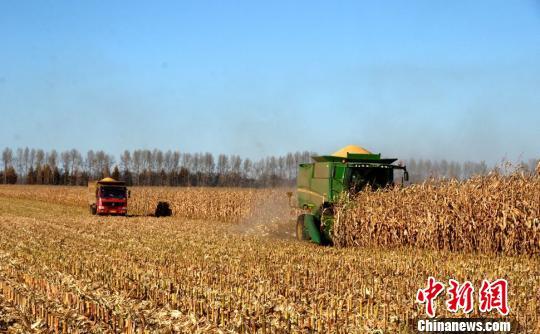 黑龙江启动玉米和大豆生产者补贴资金发放工作
