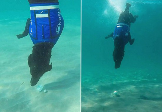 神技!美国一拉布拉多犬潜水捡拾池底塑料瓶