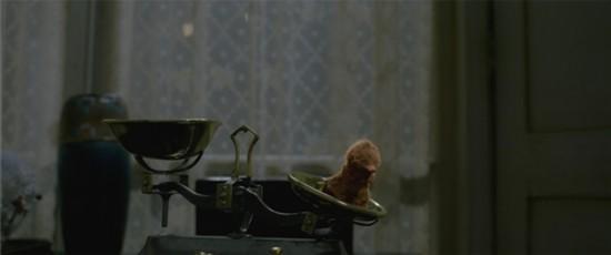 《神奇動物:格林德沃之罪》正式公映 五大看點揭秘史詩之戰
