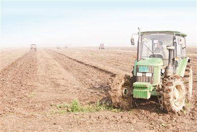 南通海门九成小麦实现机械播种