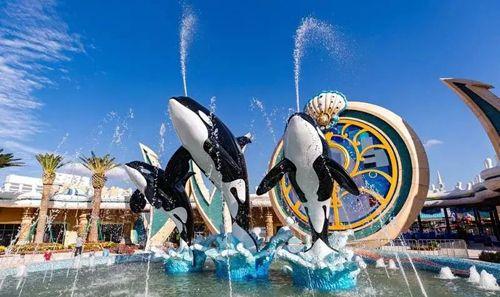 """上海海昌海洋公园官网_海昌海洋公园开园 盘点沪上有趣的""""海""""味场馆--上海频道--人民网"""