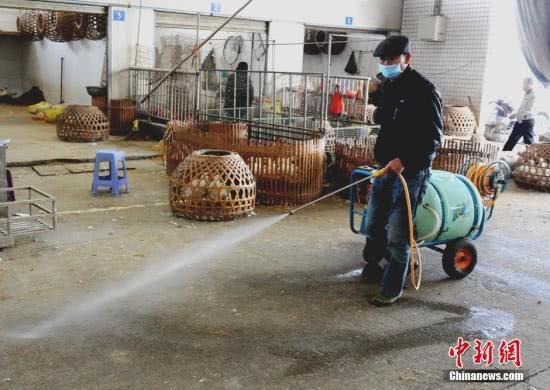 扬州发生一起家禽H5N6亚型高致病性禽流感疫情
