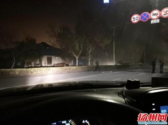 黄牛深夜发疯踩伤主人逃窜扬州街头 巡特警出动将其击毙