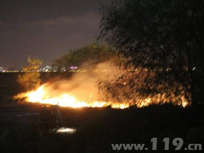 大片树丛陷火海泉州消防紧急扑救