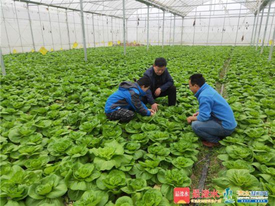 1至9月南京溧水已集聚农业高素质人口169人