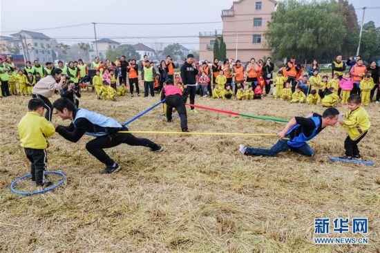 (社会)(2)稻田游戏乐淘淘
