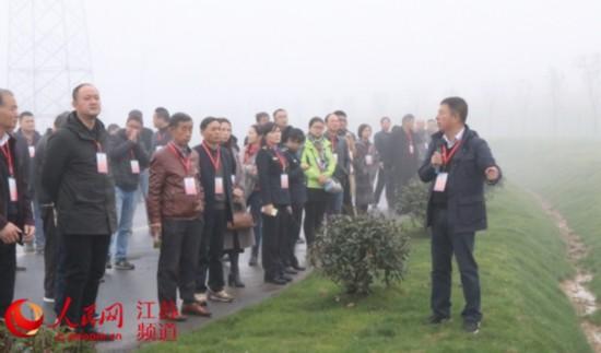 南京溧水区街公众委员为城市治理建言献策