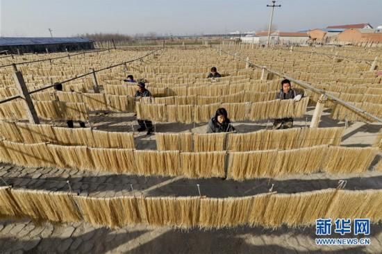(经济)(1)河北遵化:晒粉条 忙增收