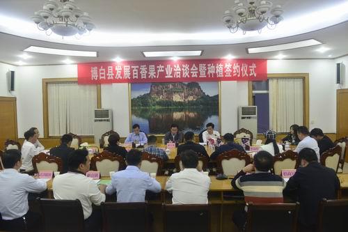 博白县举办发展百香果产业洽谈会暨种植签约仪式