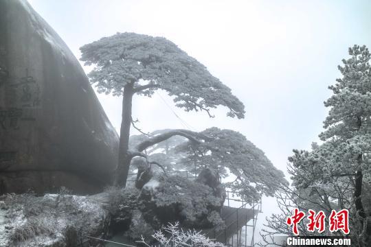安徽黄山风景区迎来今冬第一场降雪