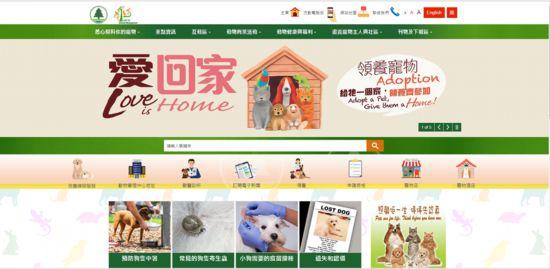 """做好""""铲屎官""""不简单在香港饲养宠物是一种怎样的体验"""
