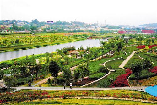 风景如画,层层梯田景观绿化带,是海绵城市湿地公园中天然的雨水净化器