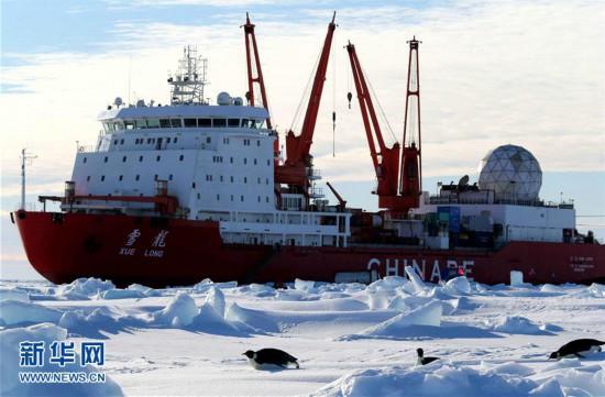 """""""雪龙""""号船边的南极企鹅"""