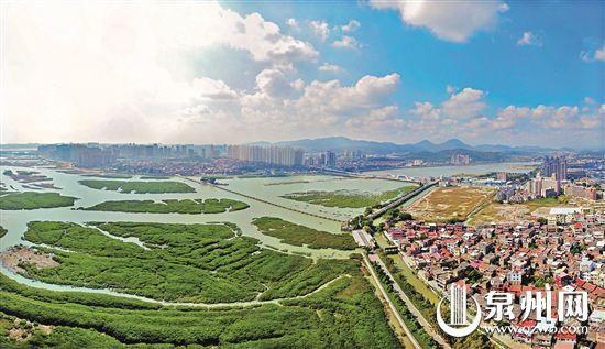 【改革开放40年】滩涂变绿肺 洛阳桥美出新气质