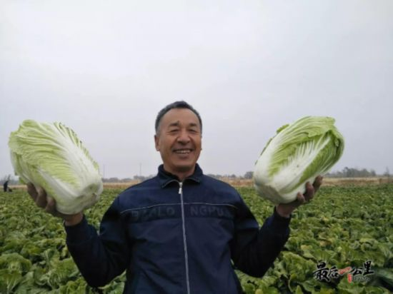 http://www.zgmaimai.cn/shipinnongfu/167361.html