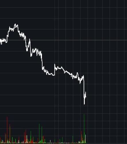 黄金配资 油价盘中跳水 布油跌至逾一年新低