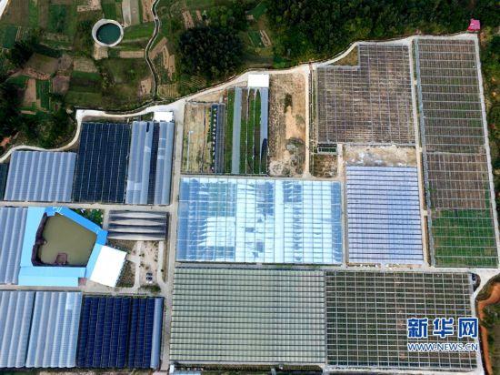 组图:泉州推进现代农业园区建设 引领乡村振兴