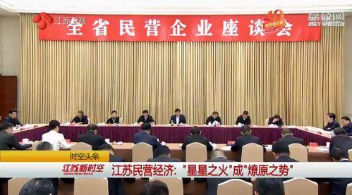 2019江蘇民營經濟_2019年中國民營經濟發展論壇成功舉行