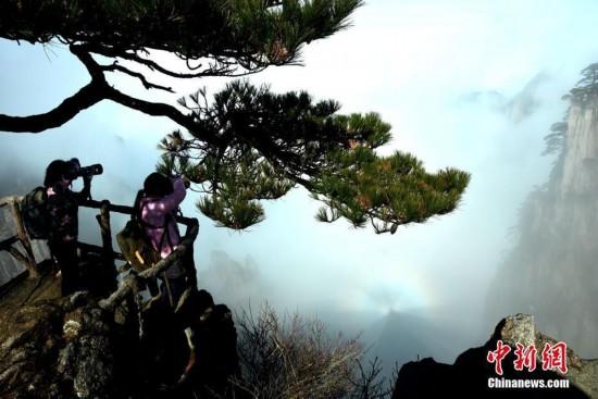 安徽黄山现云海佛光景观