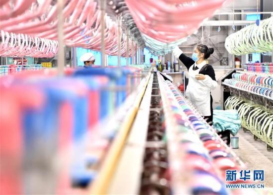 (经济)(1)广西宜州:桑蚕产业助力乡村振兴