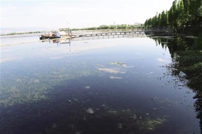 水专项研究成果助力滇池生态修复