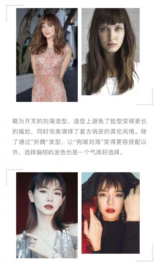 AB撞脸王子文,狗啃刘海成了明星收割机?