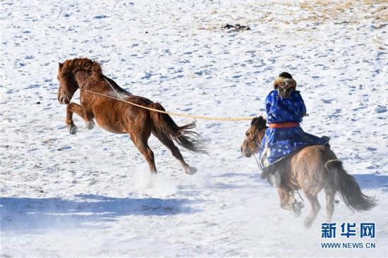 (社会)(3)马背民族雪原展绝技