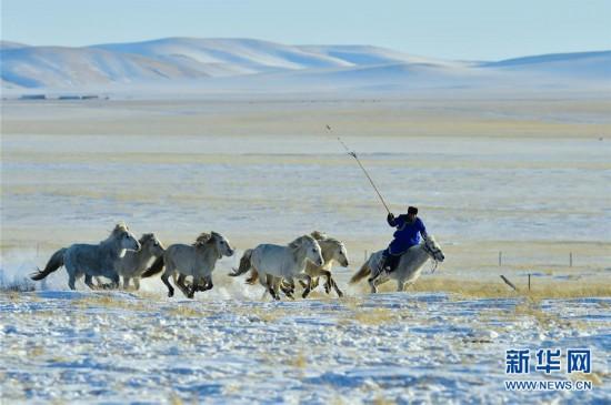 (社会)(1)马背民族雪原展绝技