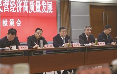 陆志鹏:营造更好环境 促进民营经济高质量发展