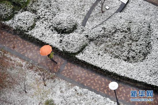 #(社会)(7)多地迎来降雪天气