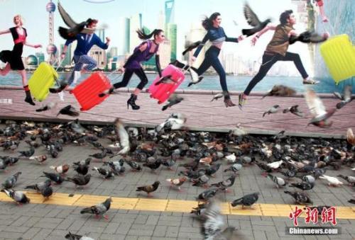 旅游资料图。<a target='_blank'  data-cke-saved-href='http://www.chinanews.com/' href='http://www.chinanews.com/'><p  align=