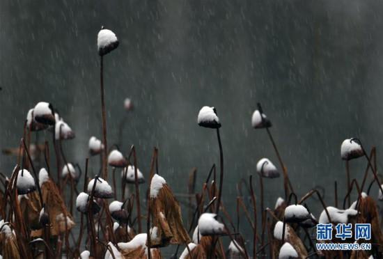 #(社会)(13)多地迎来降雪天气