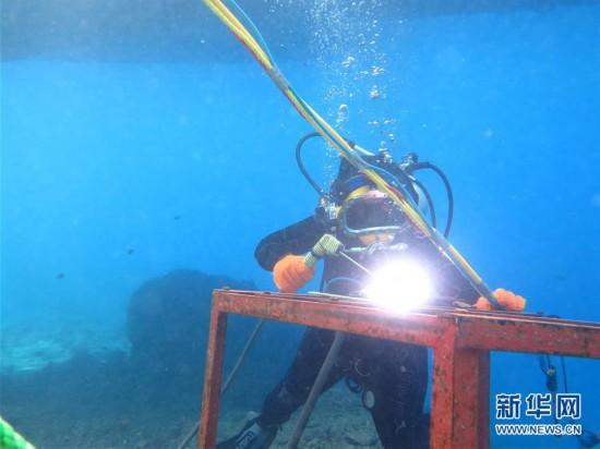 (国际・图文互动)(1)通讯:水下追梦――记埃及首位女性水下焊接工程师