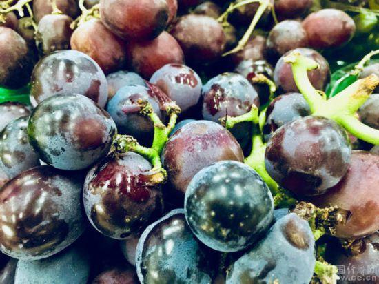常吃几种水果 让你的皮肤越来越水嫩