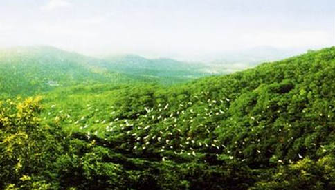 合肥紫蓬山