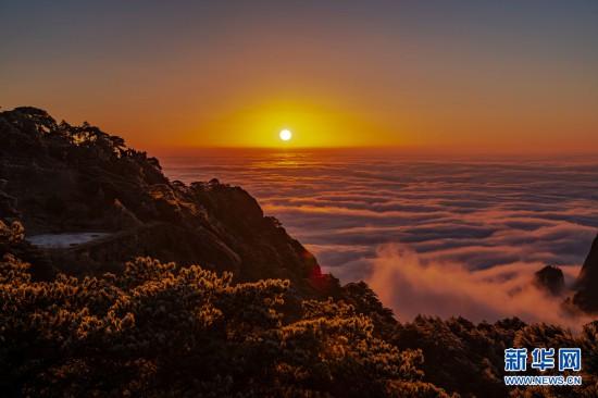 """1月12日,安徽黄山风景区雨后放晴,出现雾淞,云海,""""佛光""""美景."""