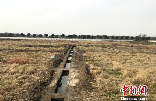 扬州考古人员被打事件追踪:被拆除的考古设施已恢复