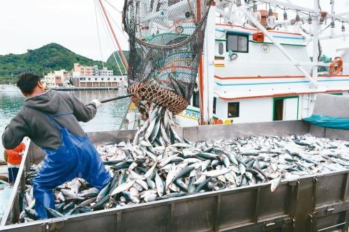 """台""""渔业署""""开放大船进鲭鱼产卵场捕捞各界哗然"""
