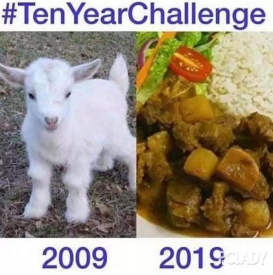 十年挑戰 | 你覺得歲月是殺豬刀還是整容刀?