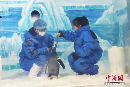 五省市冬季旅游市场:开发冰雪资