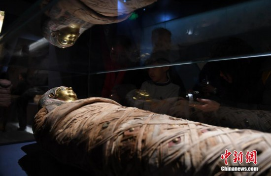 """""""法老的国度――古埃及文明展""""亮相杭州"""